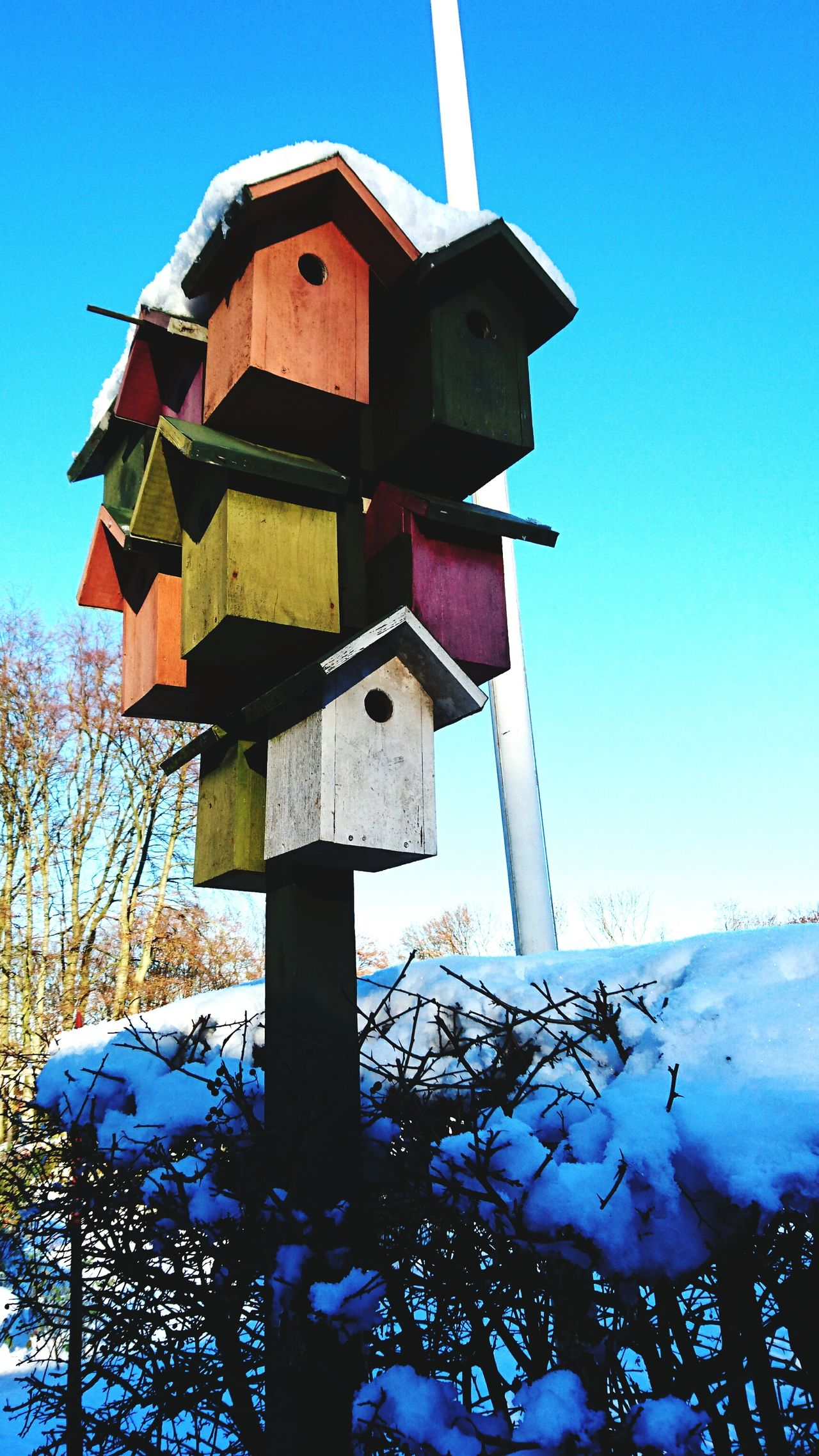 Hello Birds House Birdmansion NO FLY ZONE Hi! Sunny Day