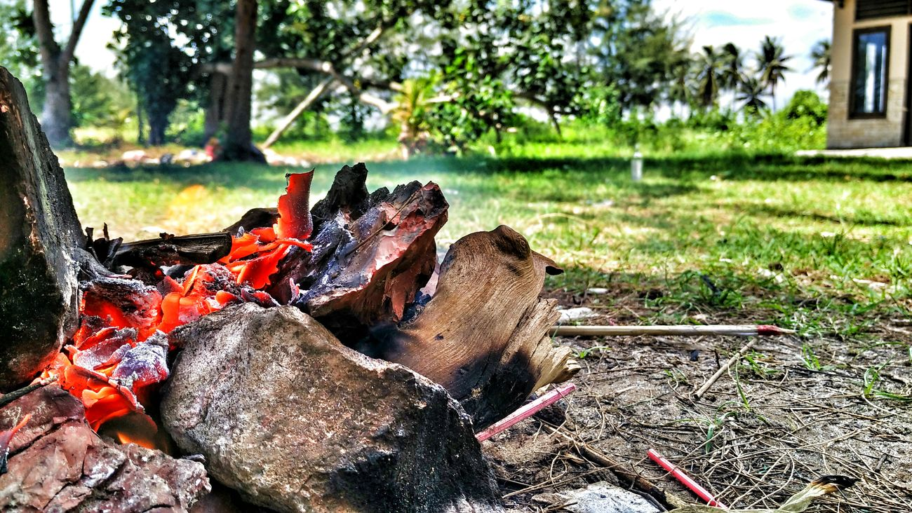 Fire Taking Photos Eye Em Around The World Gadgetgrapher Hdr_pics Enjoying Life Gadgetlicious Naturephotography Hdrphotography Worldwide_shot Gadgetgrapher_kaltim First Eyeem Photo HDR Hanging Out Relaxing INDONESIA EyeEm Indonesia Balikpapan GadgetPhotography