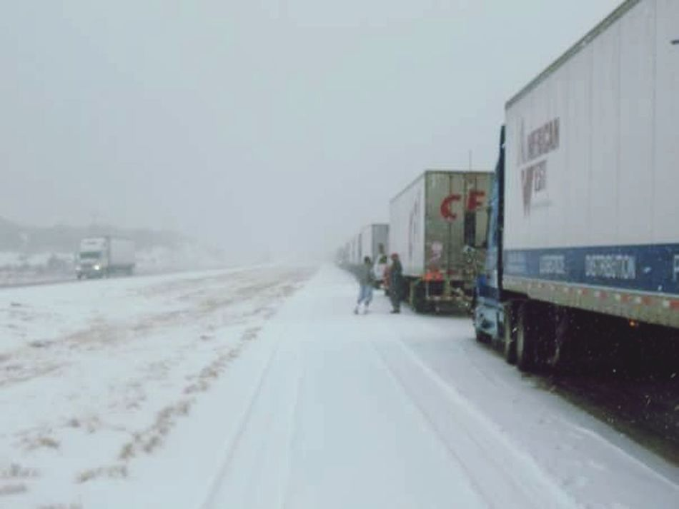 Transportation Winter Mode Of Transport Cold Temperature Commercial Land Vehicle Driving Semi-truck Snow Land Vehicle Environment Outdoors Motion Day Extreme Weather Nature People Adult Delays  Accident Backup Carjam Travel Destinations Frustration Blizzard Wait