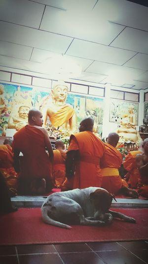 Buddha Buddhist Temple Buddhist Monks Fullmoonday Thailand Bangkok City Thaiculture