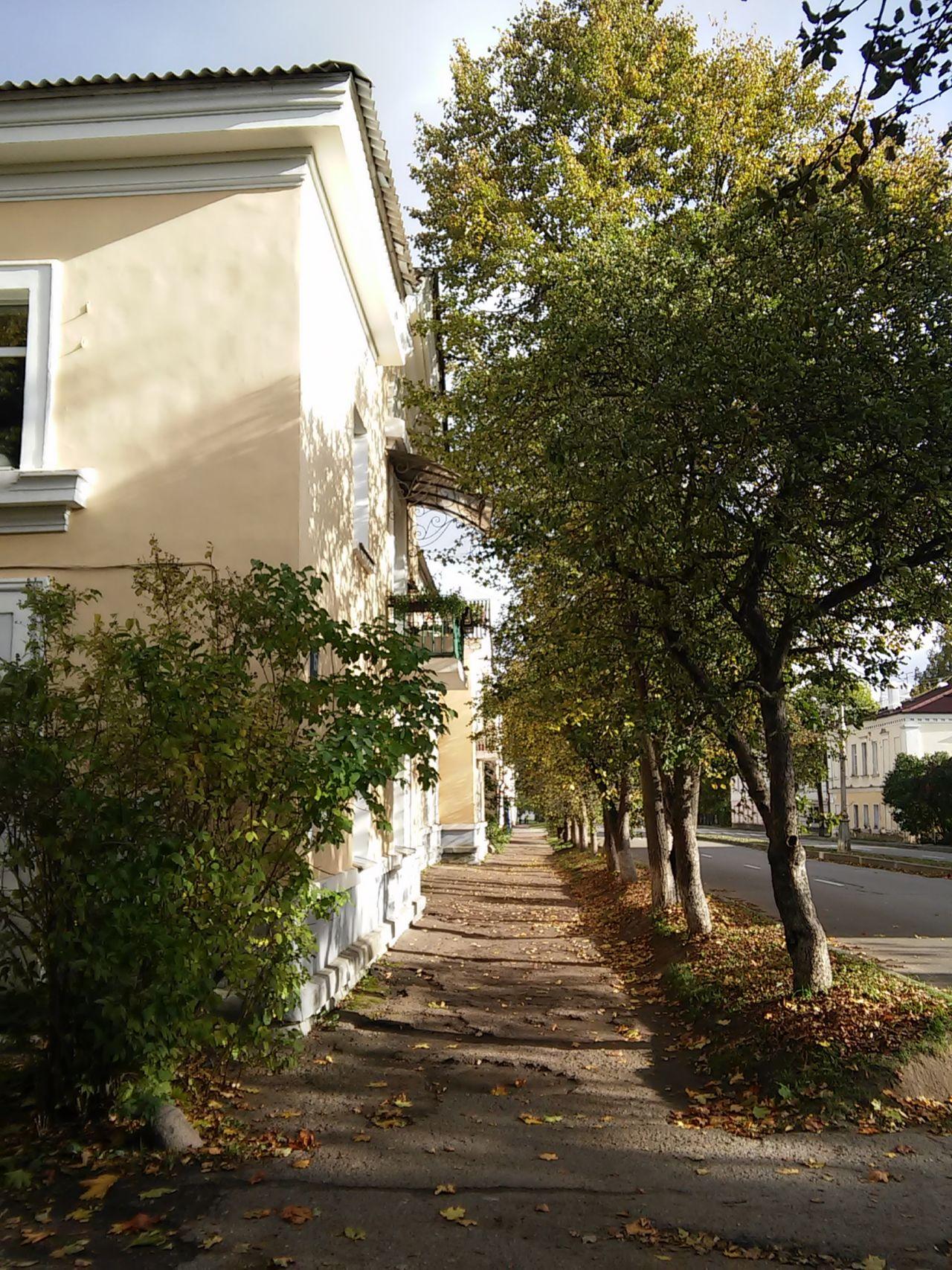 Architecture Outdoors Sun The Way Forward Tree Velikiy Novgorod Walkway