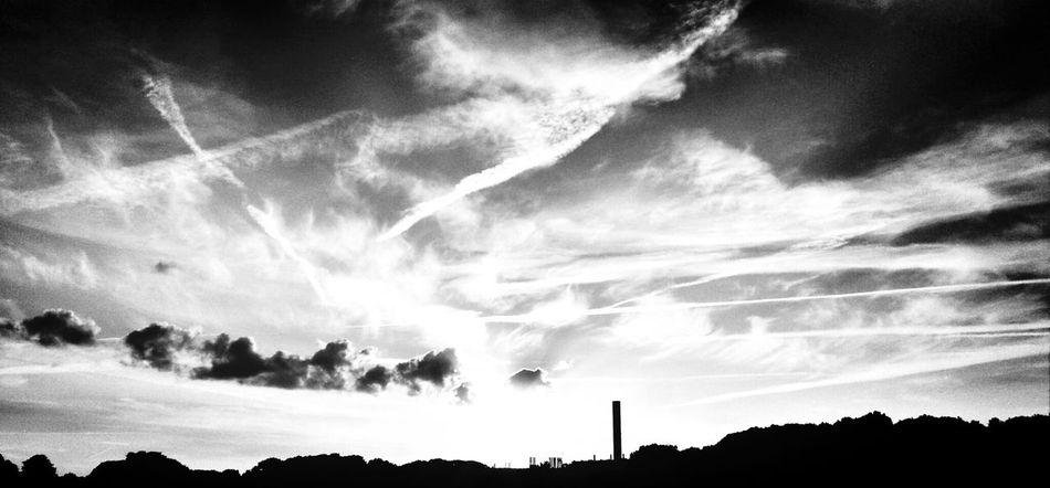 der frühe vogel kann mich mal.. Streetphotography Blackandwhite Bochum Pack Your Bag- We're Drivin' To Hell