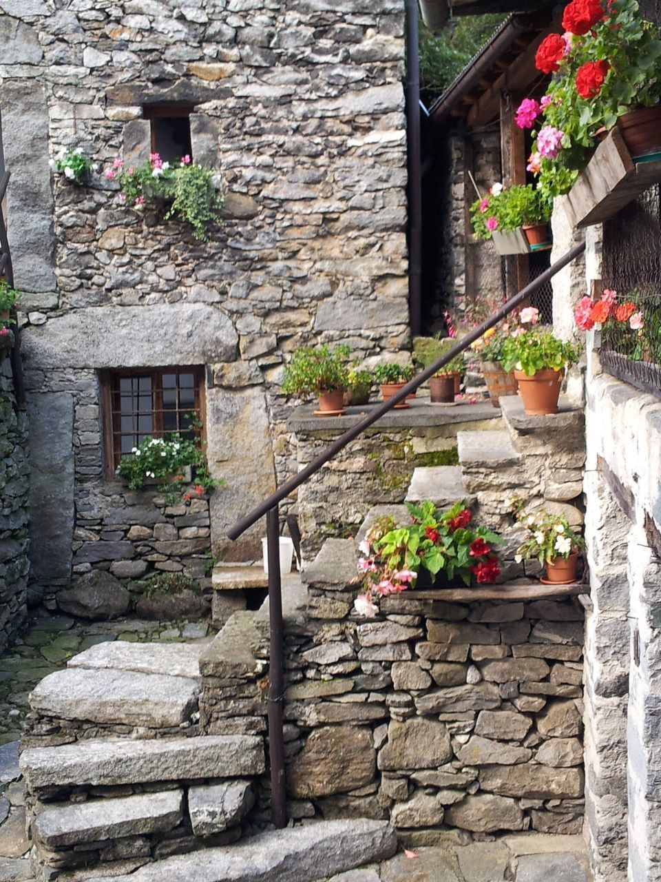 architecture, plant, built structure, outdoors, building exterior, flower, day, no people, window box, growth