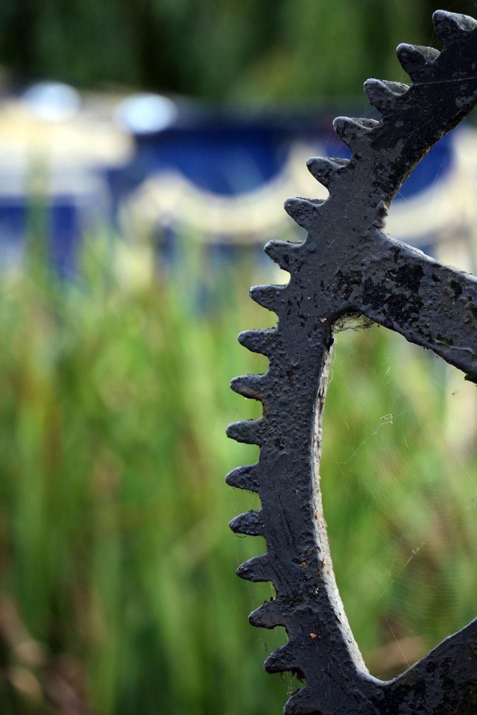 Parndon Mill Cog Close-up Cog Gear Summer