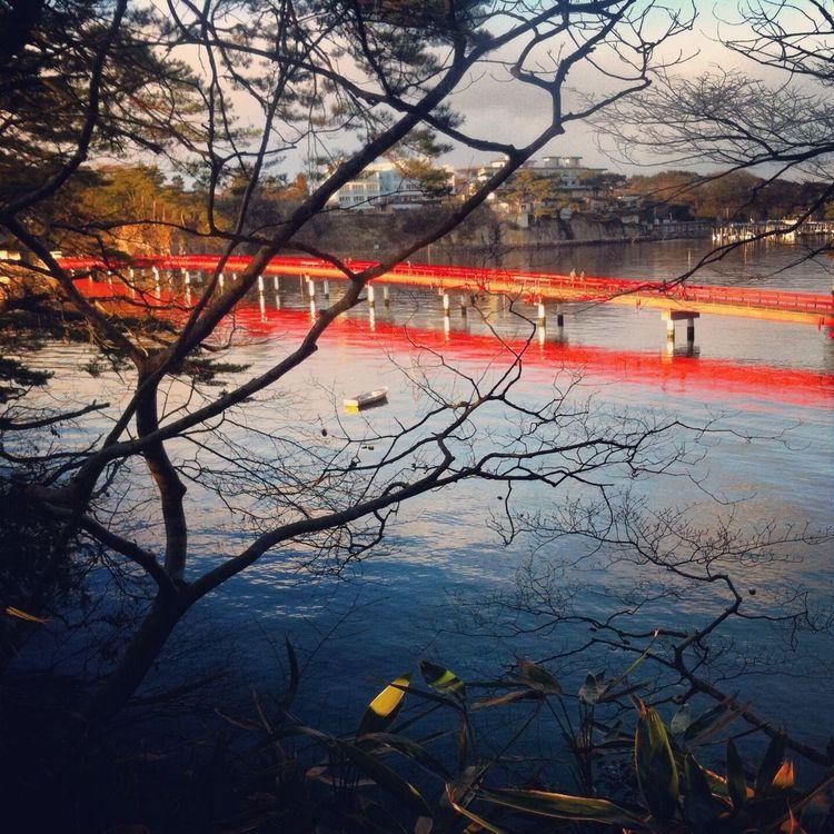 Matsushima World Heritage Site Bridge Stifanibrothers