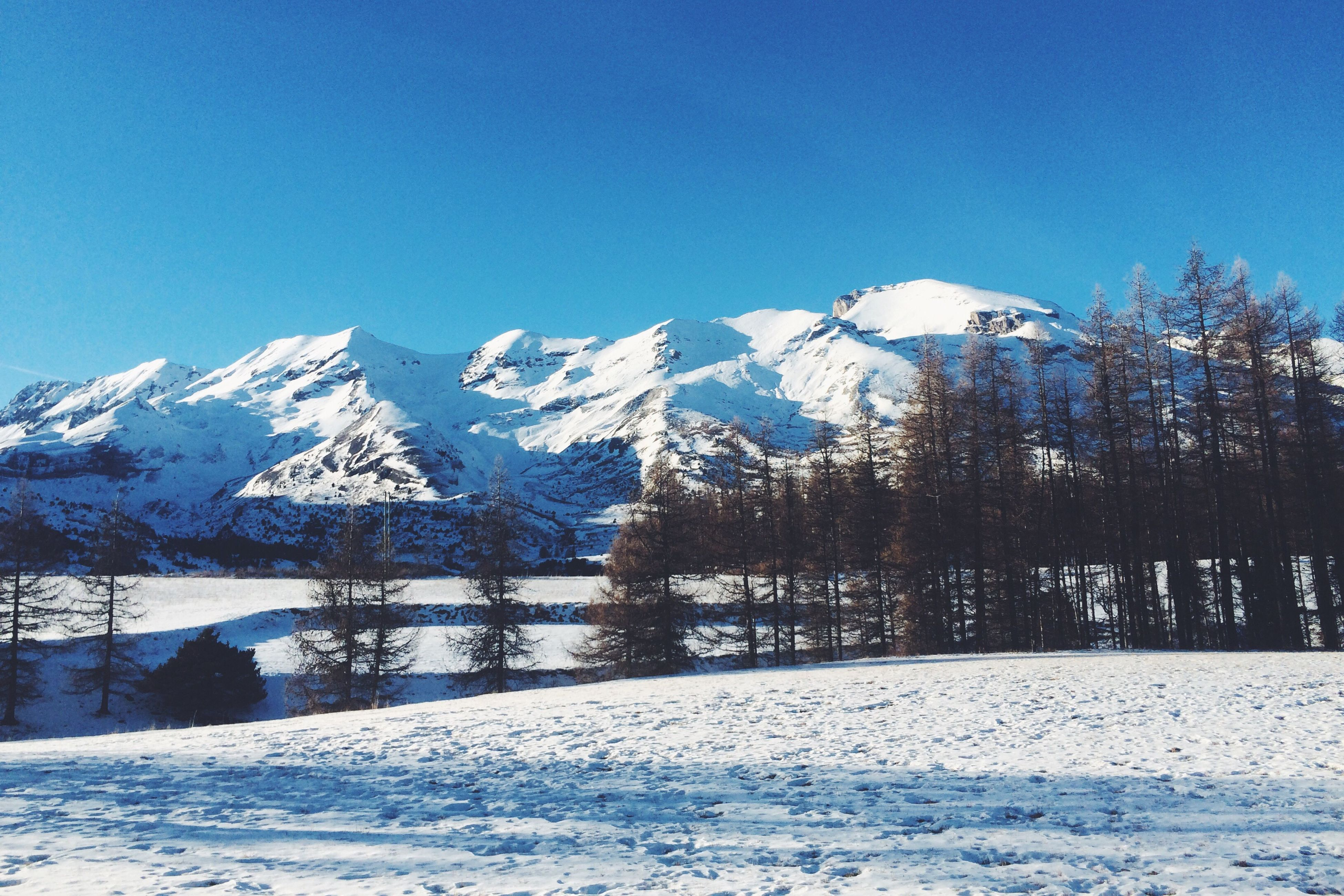 snow, cold temperature, winter, season, weather, mountain, tranquil scene, snowcapped mountain, scenics, mountain range, clear sky, beauty in nature, tree, blue, nature, tranquility, non-urban scene, physical geography, day, outdoors, majestic, deep snow, mountain peak, geology, remote, no people, rocky mountains