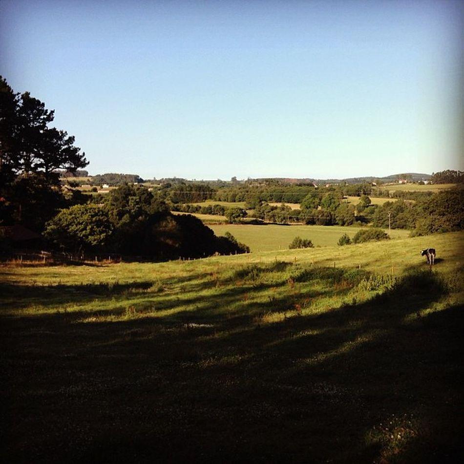 Xanceda Landscape