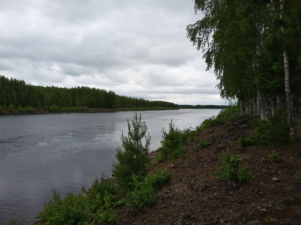 Tree Lake Landscape Water Cloud - Sky Outdoors Nature Vacations No People Beauty In Nature Rural Scene Scenics Sky Day Tranquility River Finland Joensuu