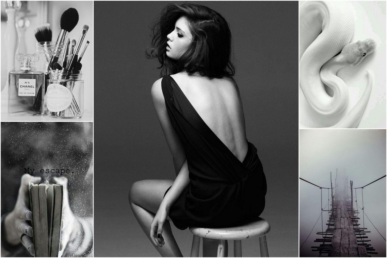 Moodboard Collage Blackandwhite Fashion Beauty Chanel Book Snake Bridge Fog