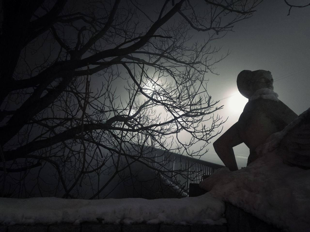 A foggy night Fog Foggy Foggy Night Bridge Three Night View Dark Statue Steet Light
