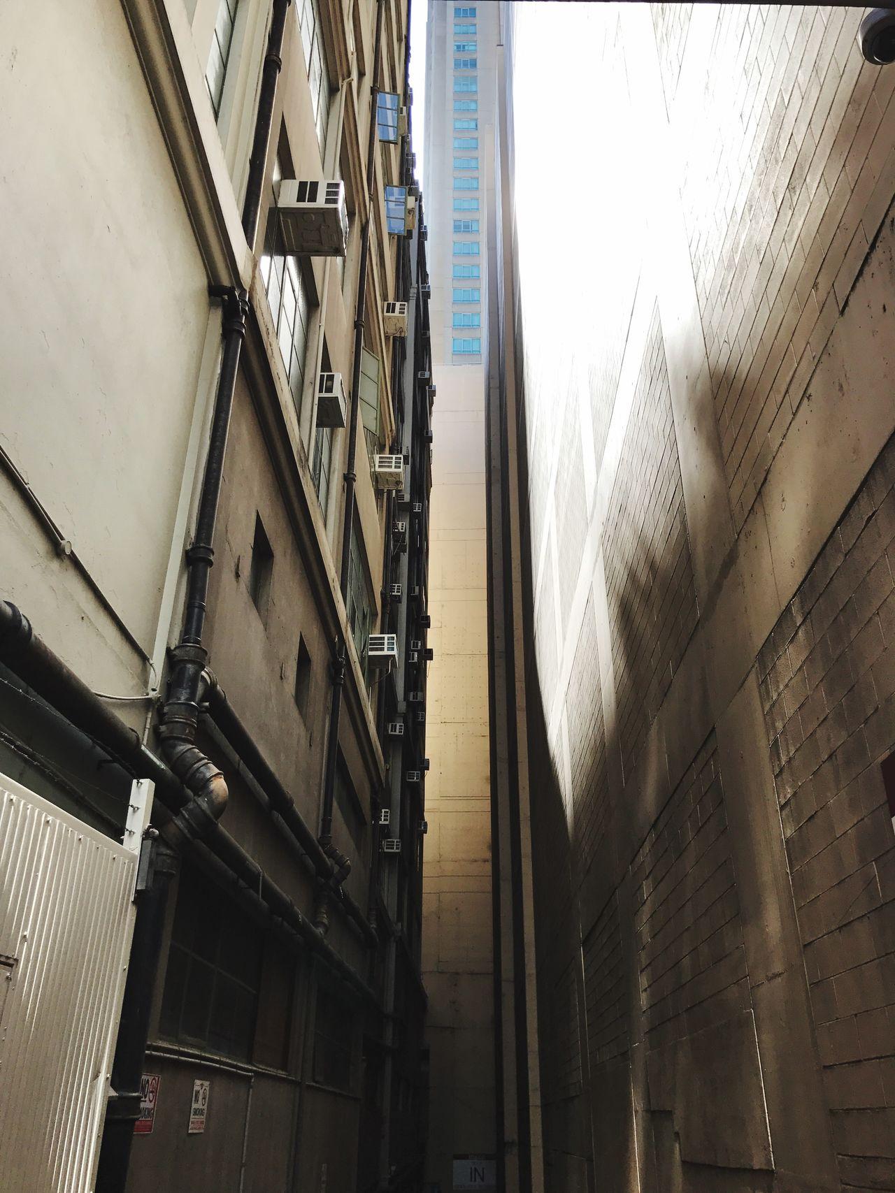 Looking Up | Laneway