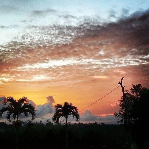 My evening view .. :-D Paradizoo MendezCavite Sunset