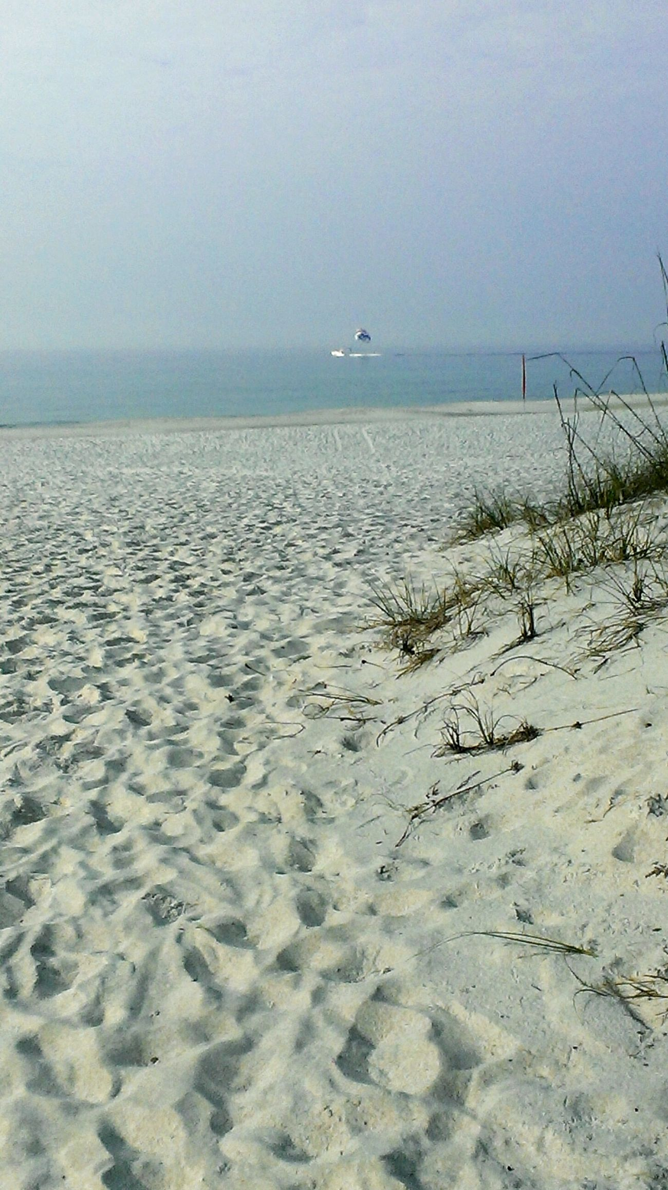 🌊🌞🐚🏄 Beachphotography Beach On The Beach Beach Life
