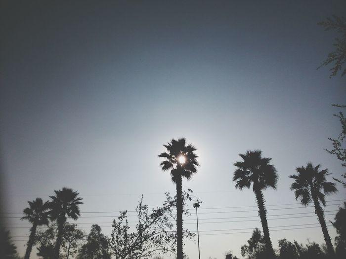 Sony Chile Sun Sky