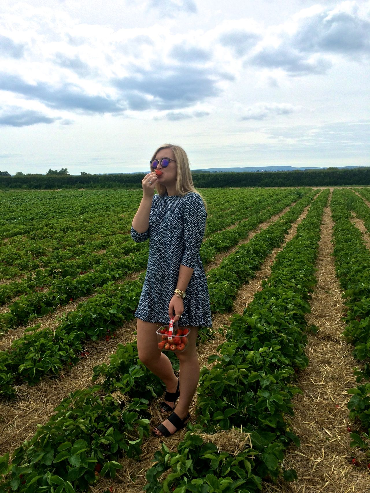 Beautiful stock photos of obst,  18-19 Years,  Basket,  Beauty In Nature,  Casual Clothing