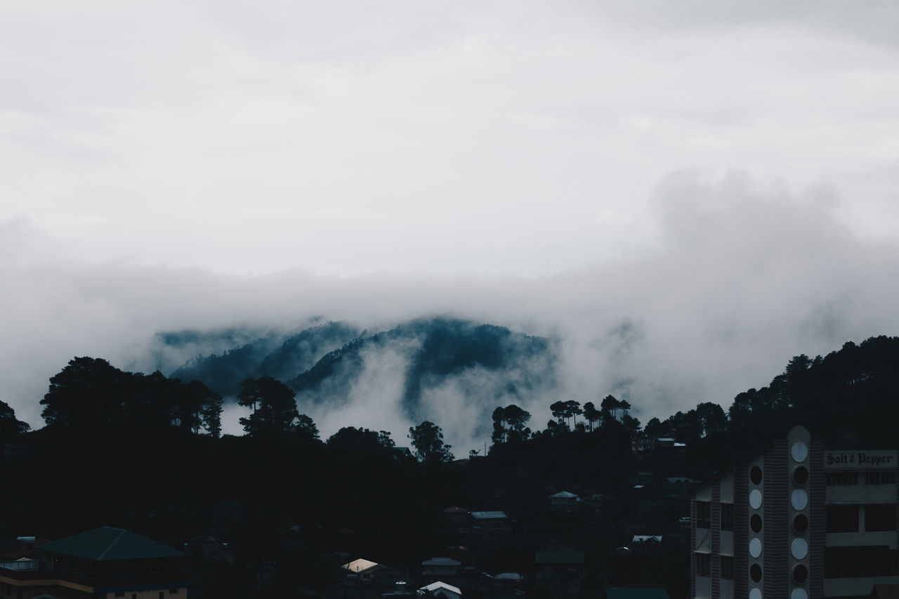 View from our inn. Sea of clouds in Sagada, Philippines. Beauty In Nature City Day Fog Landscape Landscape_photography Mountain Nature No People Outdoors Sky Travel Traveling Travelphotography Tree