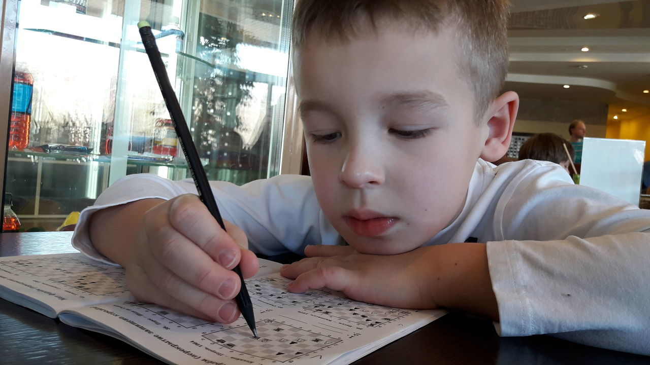 Boy, chess, study, lesson, Headshot Indoors  One Person Human Body Part Learning Child Day Human Hand