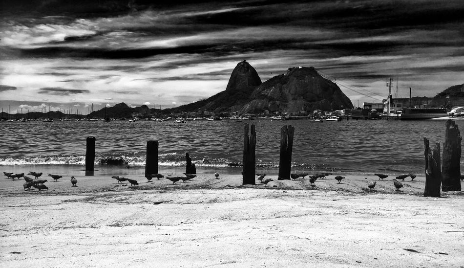 EyeEmNewHere Sky Cloud - Sky Sugarloaf Sugar Loaf Blackandwhite Black & White Black And White Poluted Earth Polution On The Beach Polution