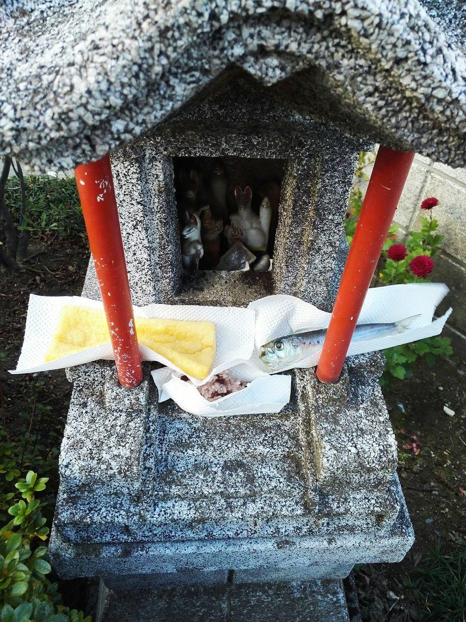 Japan 高崎市 Gunnma Takasaki Food Fox Kitune Oinari-sama Oinarisan Yashikimaturi 屋敷祭り