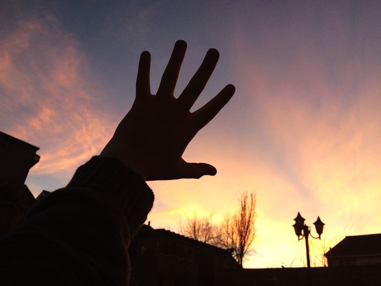 Long Goodbye Sunset Sky Human Hand Real People Animal Themes Silhouette Gesturing Domestic Animals Leisure Activity One Person Cloud - Sky Sun Outdoors Friendship Mammal Day