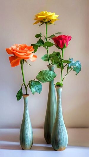 Beauty In Nature Beauty Of Nature Colors Colours Flowers Roses Still Life Three Roses