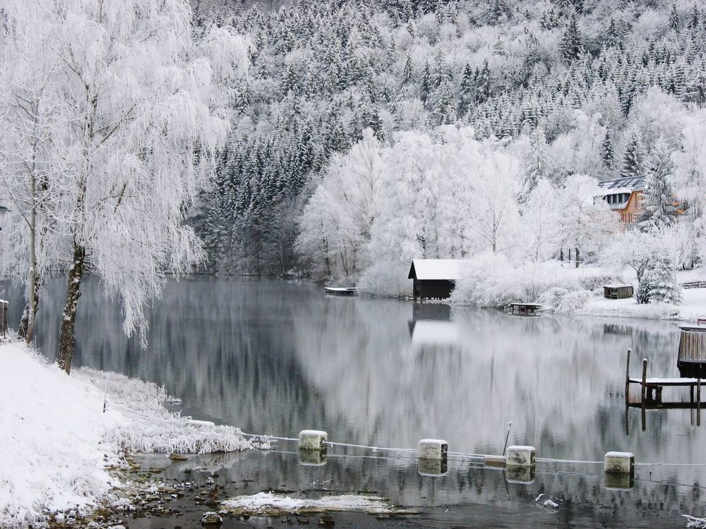 Frosty Lake with a Boat House - We love Austria! Lake Water Reflection Outdoors Tree Nature No People Beauty In Nature Sky Boat House Winter In Austria Lunz Am See  Built Structure Day Building Exterior Architecture Frosty Morning Magic Of Winter The Great Outdoors - 2017 EyeEm Awards EyeEmNewHere