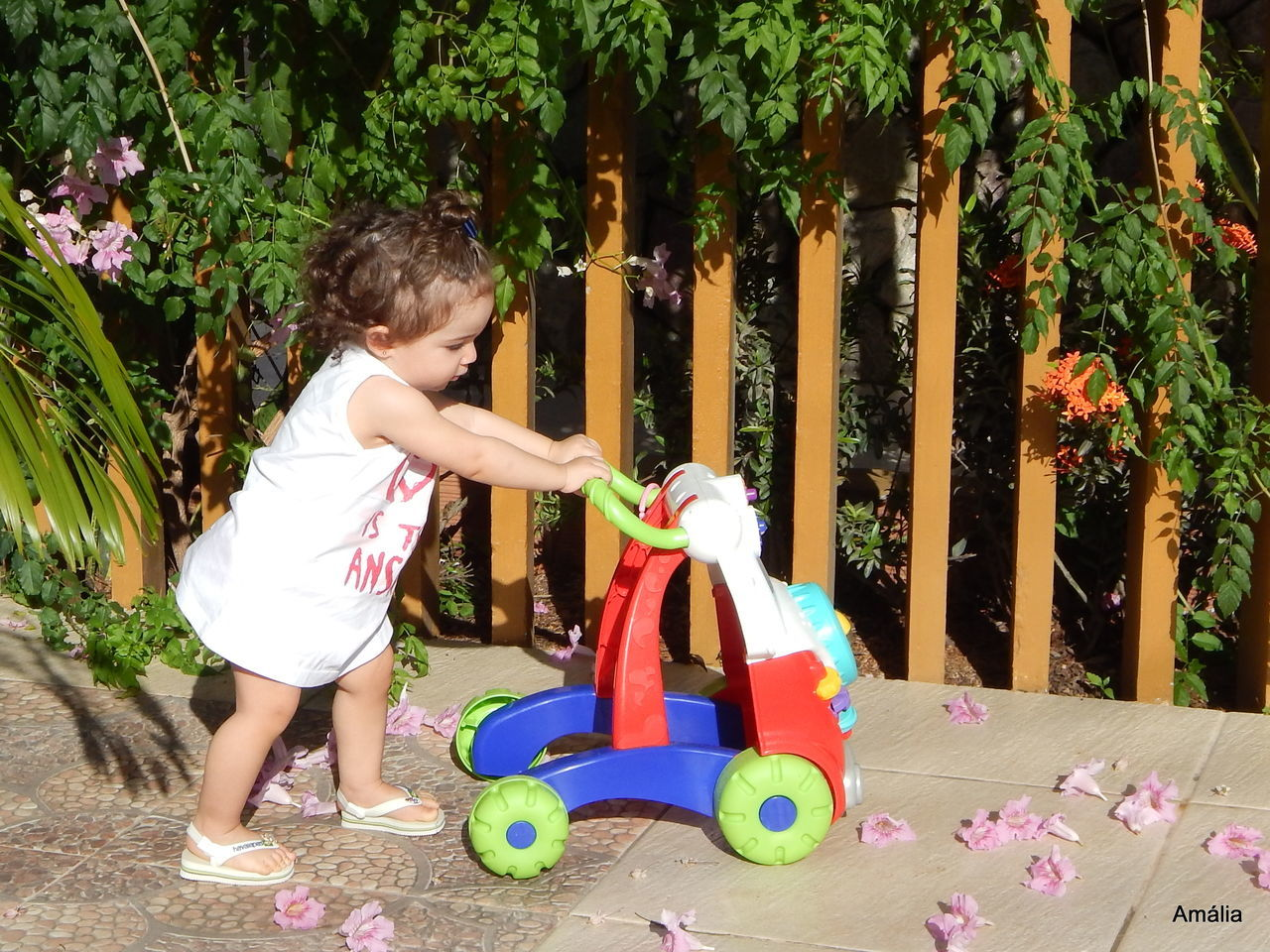 Side View Of Child Playing With Toy At Yard