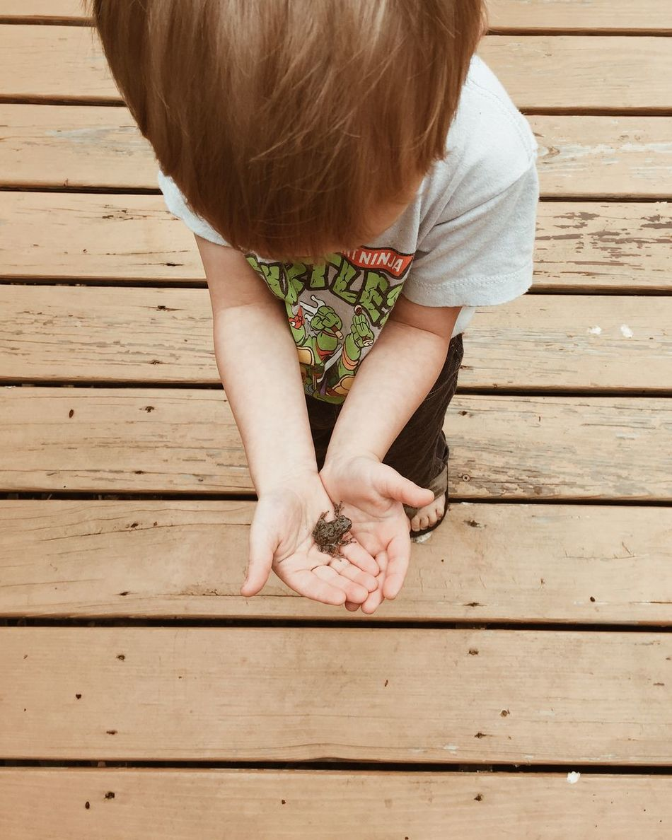 Beautiful stock photos of frog, Animal Themes, Boys, Brown Hair, Casual Clothing