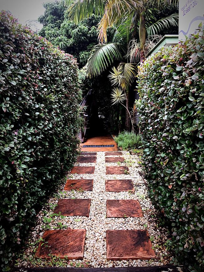 Path To ...???? Taking Photos Enjoying Life IPhone 6+ Check This Out Hello World Drive Way path Nature Beautiful Whimsical