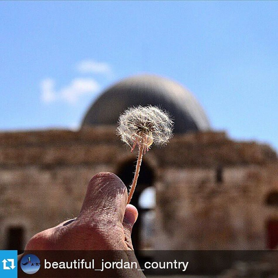Thank you @beautiful_jordan_country Repost from @beautiful_jordan_country with @repostapp — Thank You : @motasemash Tag Your Travels photos with : Beautifuljordan Please share our account 🙏