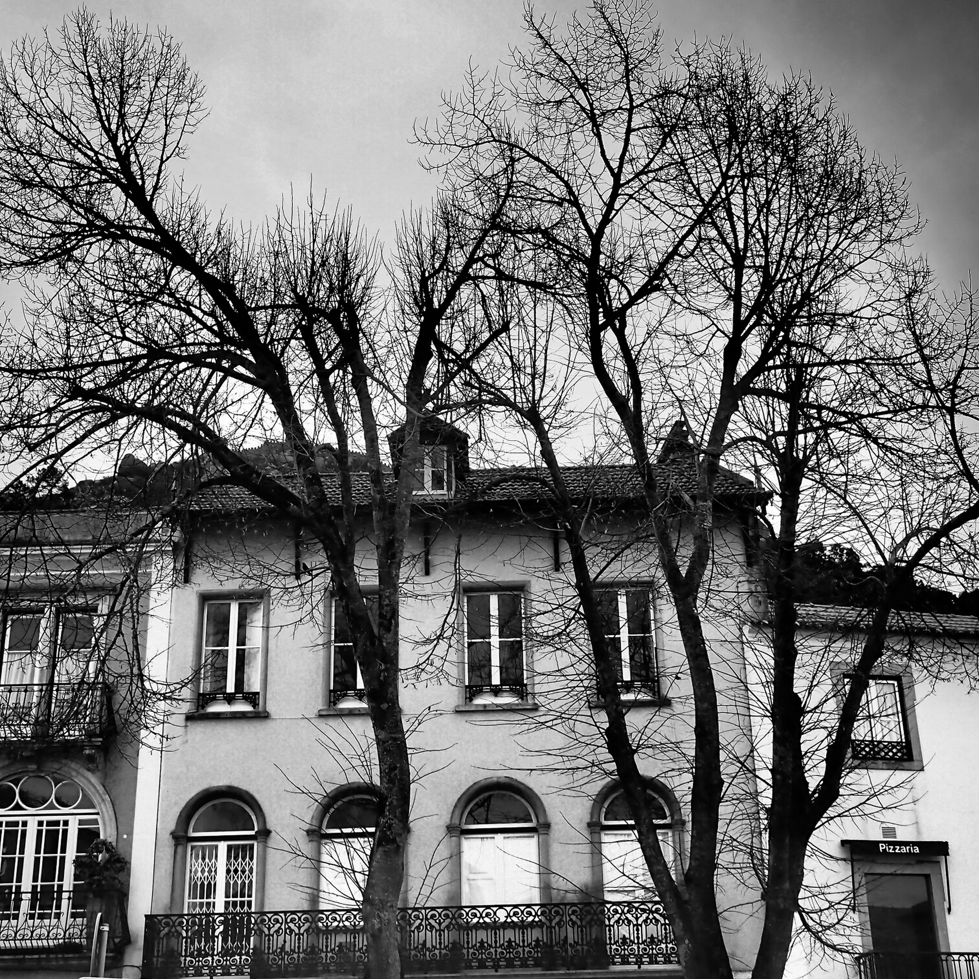 architecture, building exterior, built structure, bare tree, tree, branch, sky, window, residential building, low angle view, city, residential structure, building, house, day, railing, outdoors, no people, facade, tree trunk