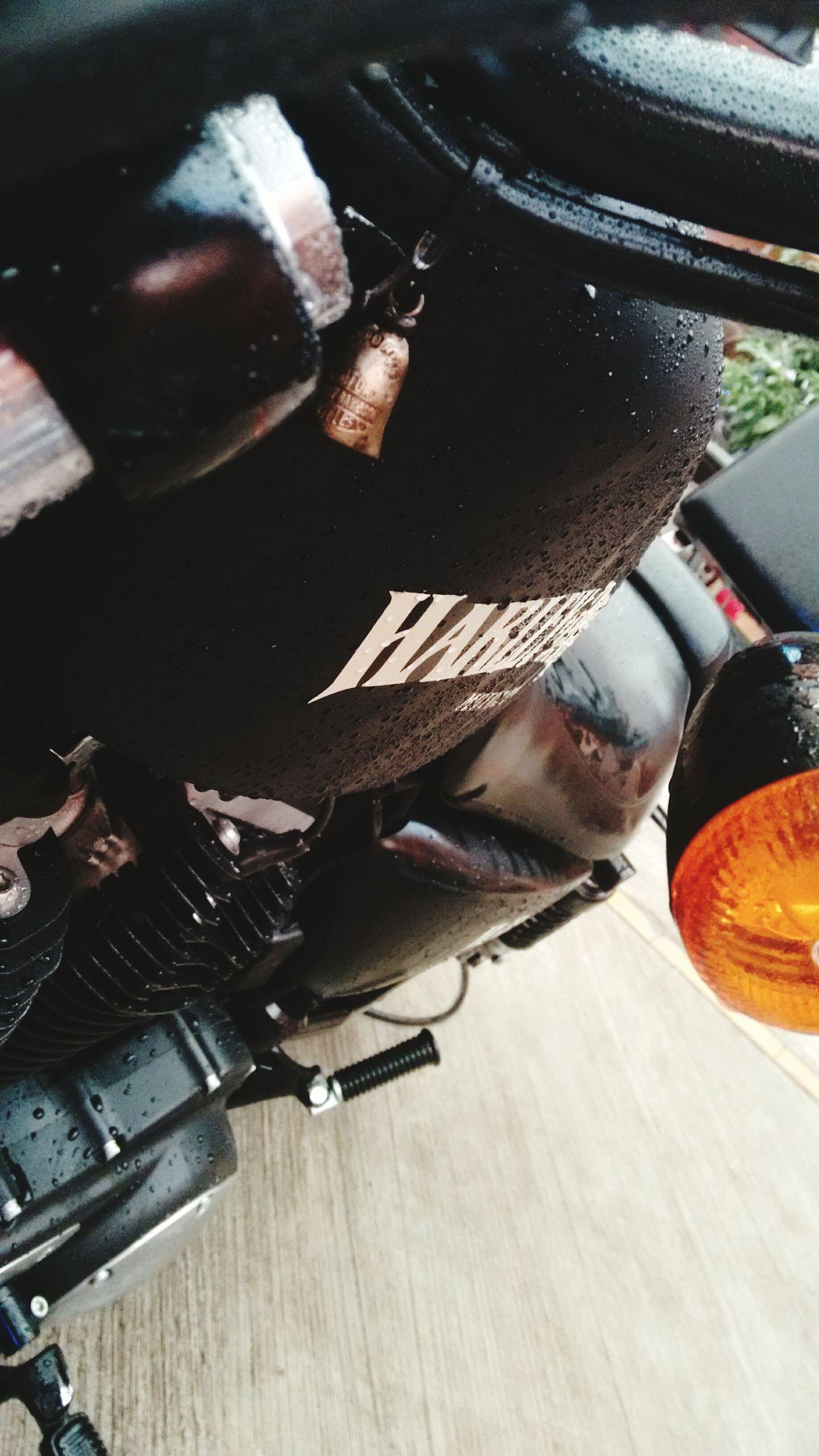 Motorcycle Harleydavidson Harley Davidson