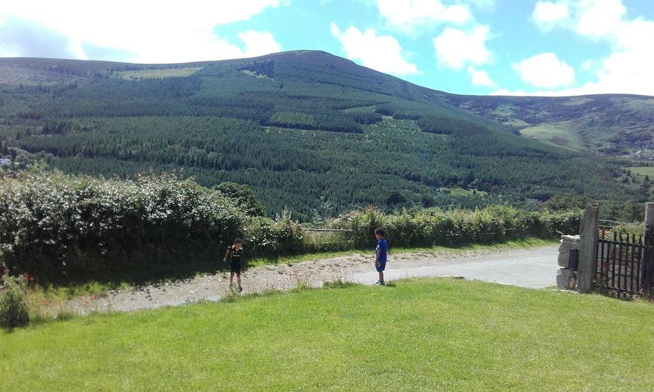 Camping Hostel View Knockree Wicklow Mountains  Wicklow Enniskerry Ireland Green Mountanious