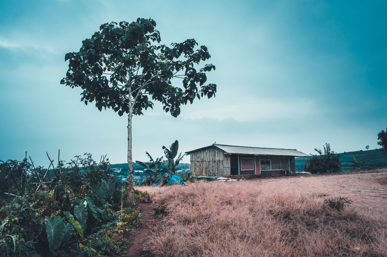 The Great Outdoors - 2017 EyeEm Awards Outdoors Rural Scene Sky Tree Day Cloud - Sky Agriculture No People Built Structure Growth Nature Landscapes Landscape First Eyeem Photo Freshness Beauty In Nature Tranquil Scene Tranquility Rear View Village Building Farm Travel