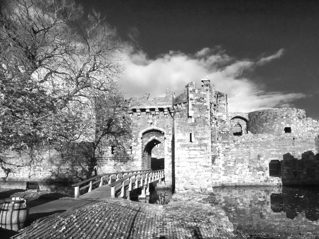 Old Ruin History Castle Streetphotography Street Photography Blackandwhite Black And White Monochrome JoMo Photo Streetphoto_bw IPhoneography Water Outdoors Tree Sky Architecture Religion No People Day
