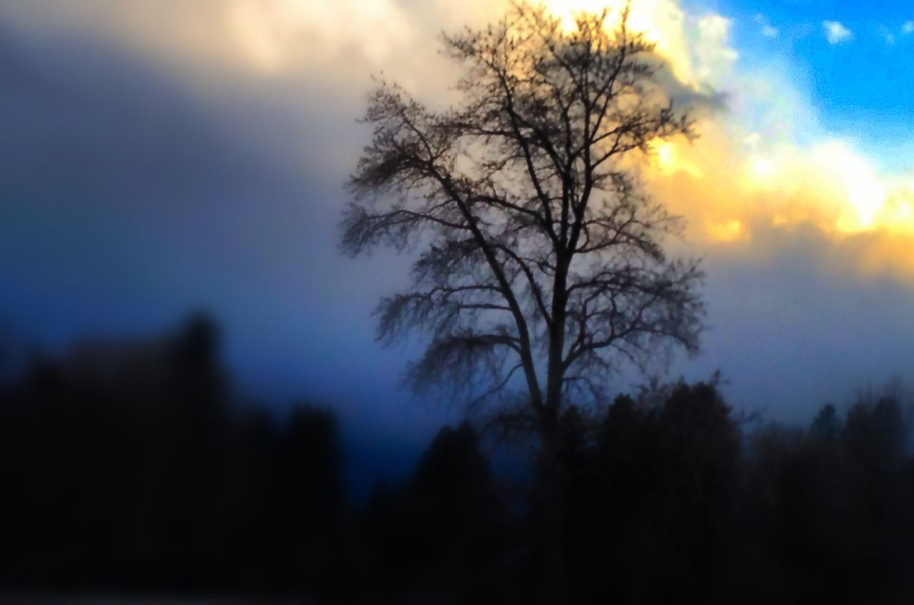 Cellphonepics Noplacelikethe206 Seattles Beautiful Colors Morning Light Cold And Foggy