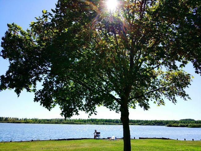 Eyeemphoto Sun Enjoying Life Eye4photography  EyeEm Best Shots The Essence Of Summer Bucolic Place Summer2016 Landscape_Collection Lac j Fishing