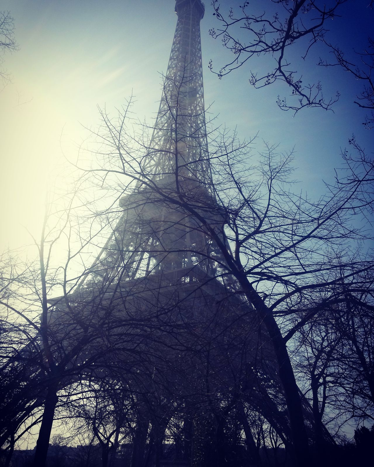 Nature Beauty In Nature Winter Trees Wintertime Winter Travel Tourism Tourist Attraction  Travel Photography Historical Building Building Exterior Travel Destinations Cloud - Sky Built Structure Outdoors Branch Low Angle View Paris France Eiffel Tower Sky Tree Architecture Art Day