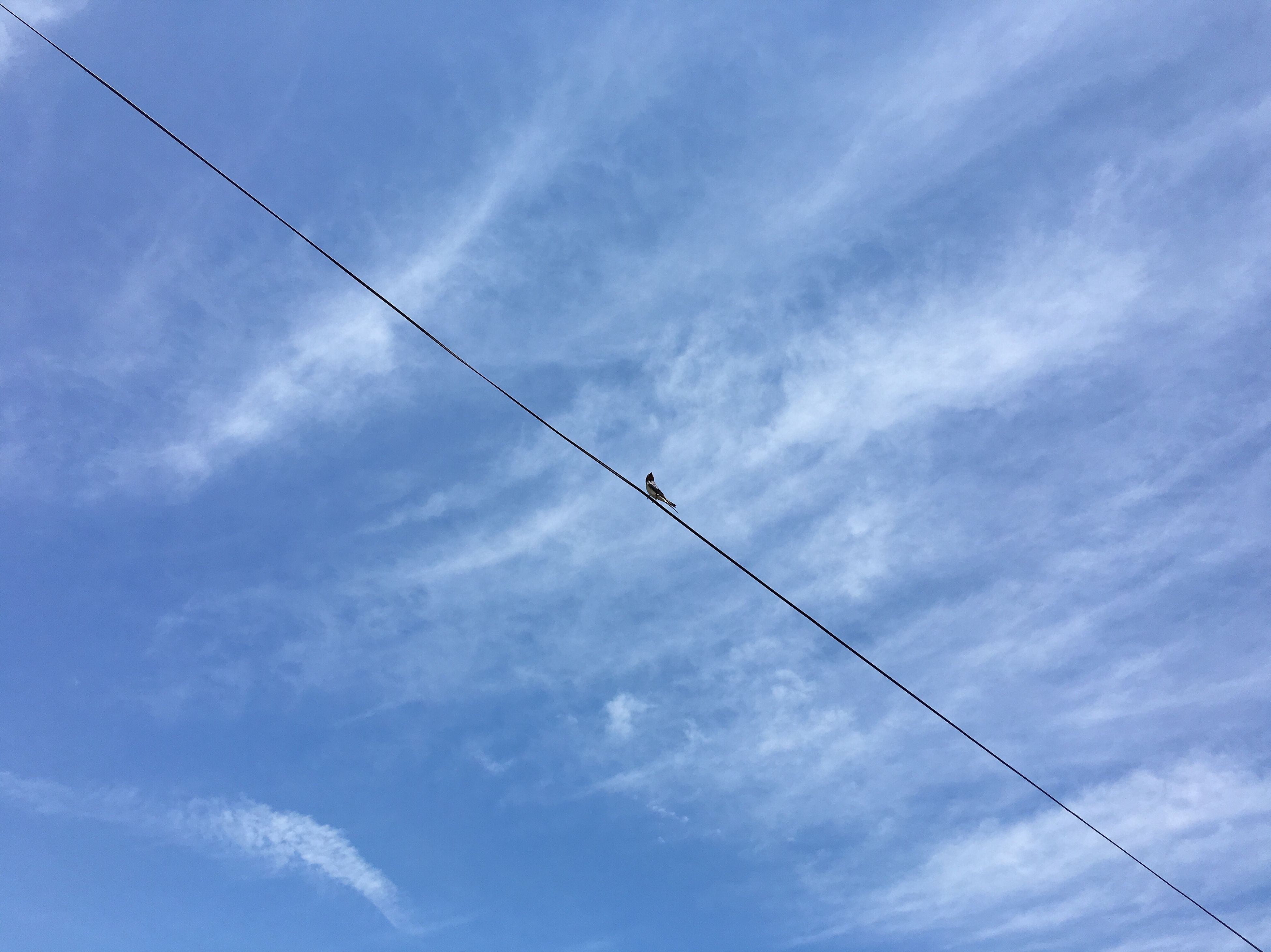 low angle view, sky, blue, cloud - sky, flying, airplane, cloud, day, technology, cloudy, no people, outdoors, cable, fuel and power generation, connection, transportation, nature, power line, electricity, air vehicle