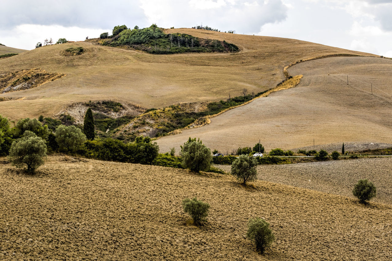 Agricultural Land Agriculture Beauty In Nature Beauty In Nature Day Landscape No People Outdoors Plowed Field Travel Destinations Tuscany Tuscany Countryside Tuscany Italy Tuscany Landscape