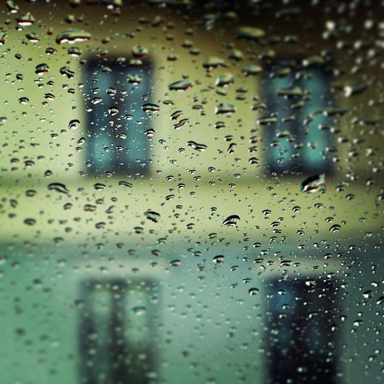 Winter is coming Rain Minsk Cityminsk