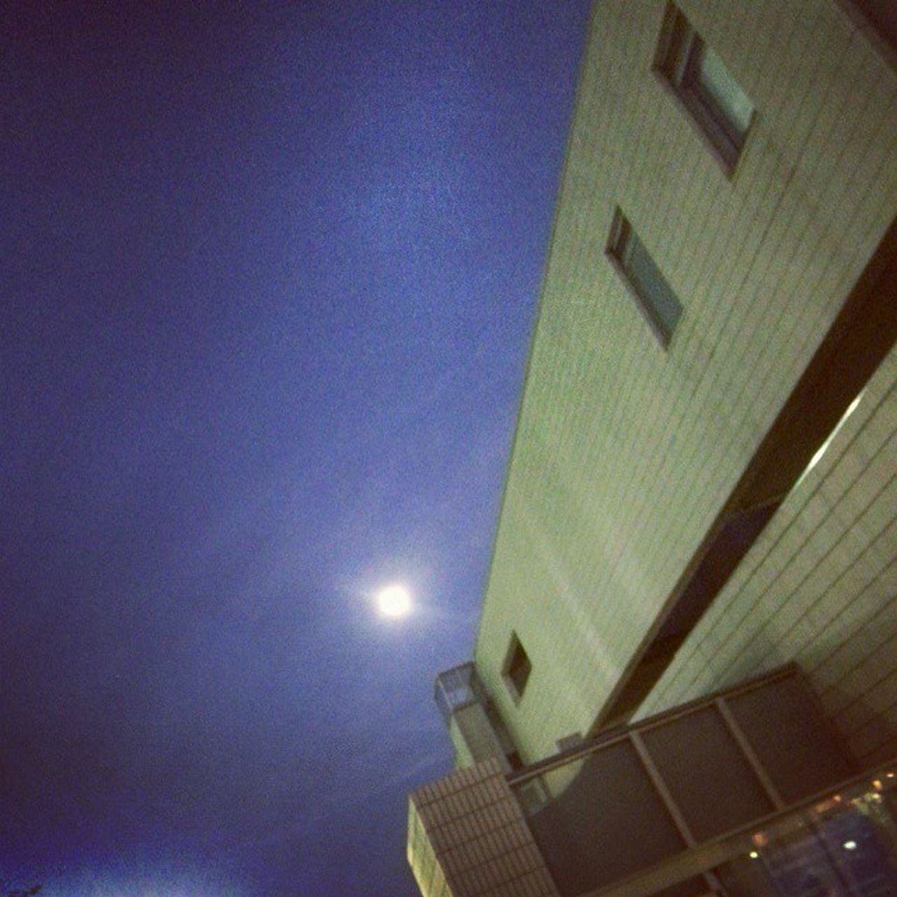 図書館出たらまさかの真っ暗。 向こうの方はまだ明るいか。 月 夕焼け見たかった 自転車でお散歩しよ 本借りすぎてリュック重い