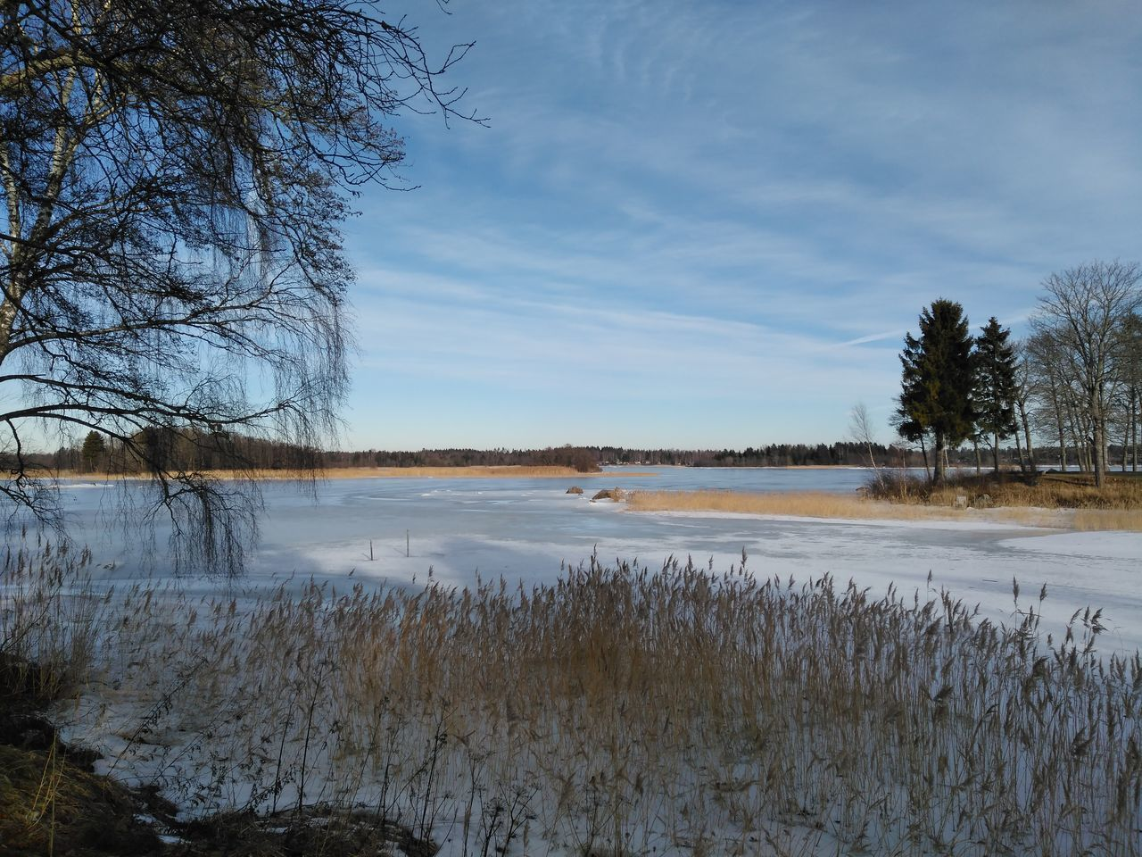 sky, tree, bare tree, nature, tranquil scene, tranquility, winter, beauty in nature, cold temperature, scenics, water, lake, snow, no people, landscape, outdoors, day, cloud - sky, branch, grass