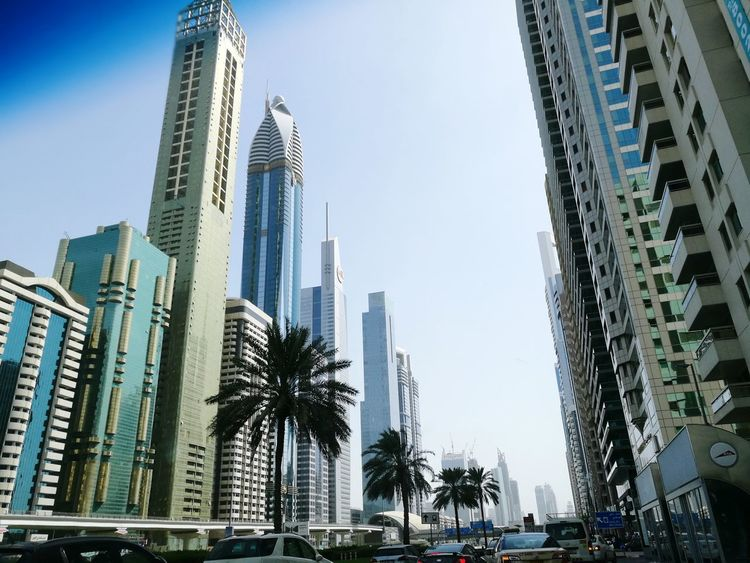 Hello World Taking Photos City Life Cityscapes High Rise Building Architecture Architectural Detail Sky Palm Trees Cars Bus Stop Colour Of Life