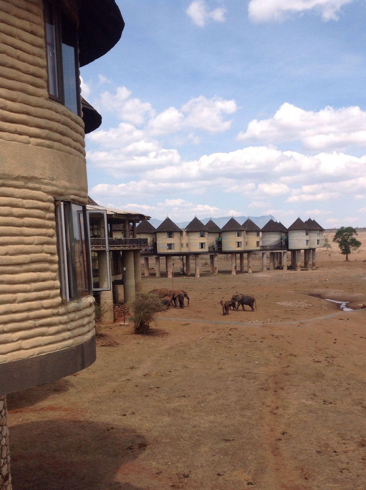 Africa Tsavo East Kenya Traveling African Safari Tsavo Elephant Tsavohotel