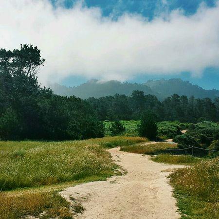 California Coast Monterey Carmel