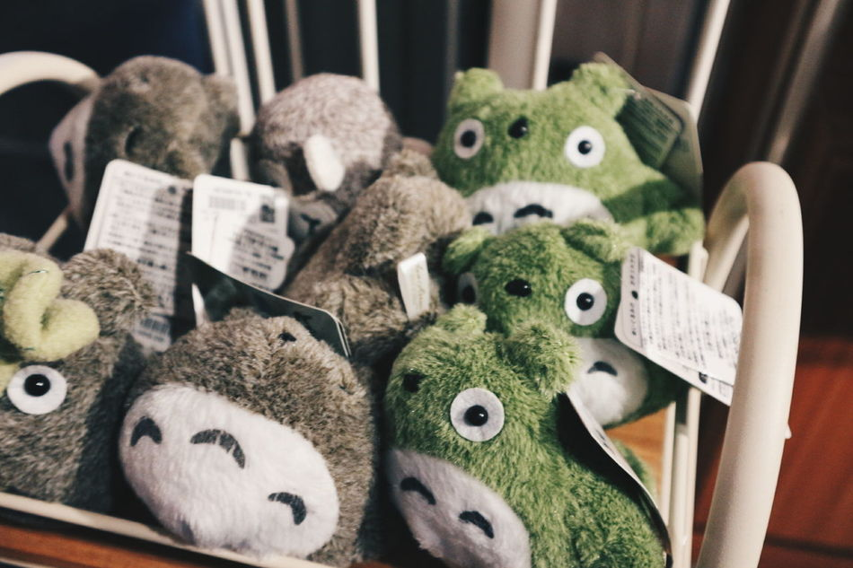 Totoro attack/? 😂 Cuties Totoro TotoroStuffs Cutestuff M10 Canonm10 Mirrorlessphoto Today.