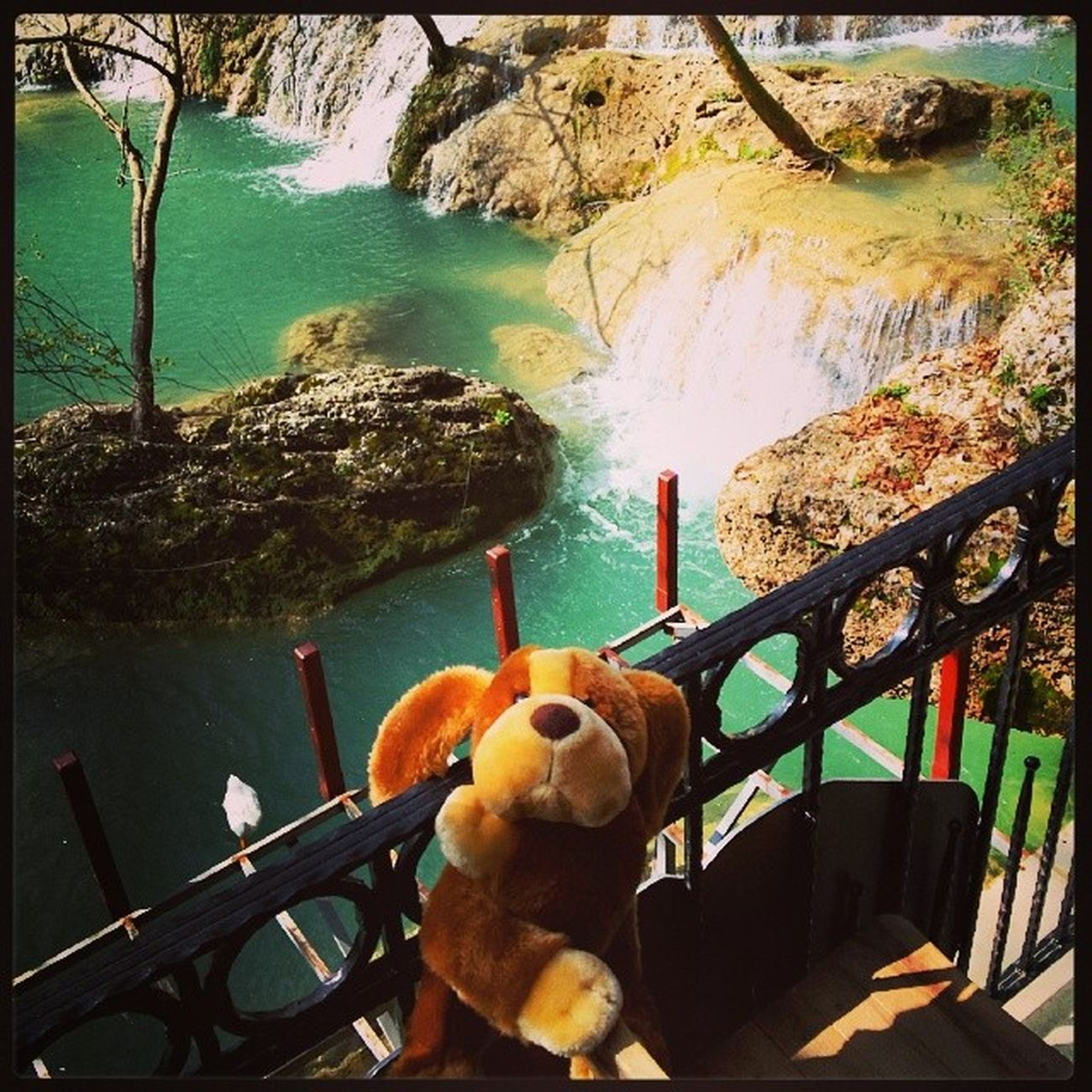 Kursunlu Waterfalls . Puppy is taking a break. Puppyontour Turkey Turkiye