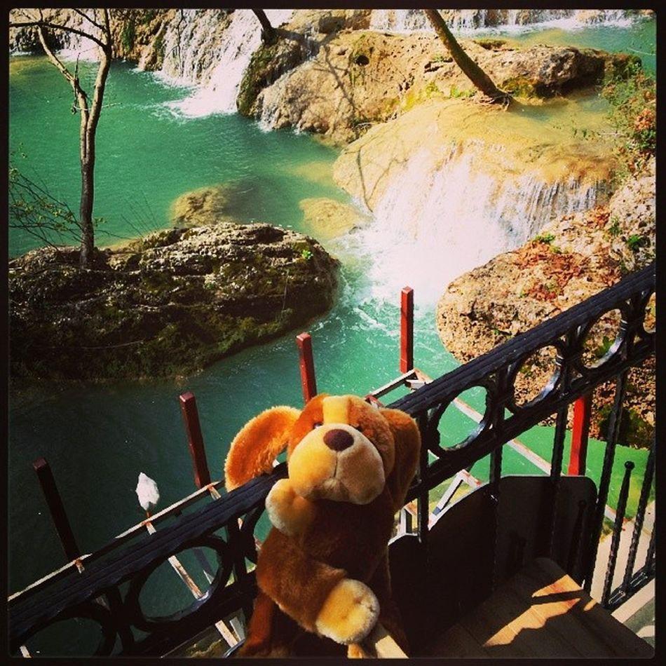 Kursunlu Waterfalls . Puppy is taking a break. Puppyontour Turkey Turkiye