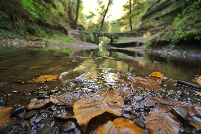 Natural Beauty Hocking Hills Canonphotography Capture The Moment EyeEm Gallery Things I Find Beautiful Beauty In Nature EyeEm Masterclass How Country Feels💞 EyeEm Nature Lover America Coast To Coast Autumn 🍁🍂🍃🌿 Always In My Heart💜 Autumn🍁🍁🍁 Autumn Colours No People Autumn Water CaptureTheMoment Canon 70d Tranquility